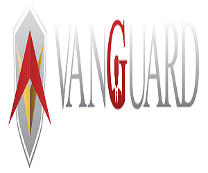 Sale Executive VanGuard